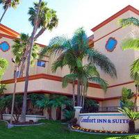 Comfort Inn & Suites Zoo Sea World Area