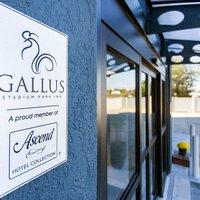 Gallus Stadium Park Inn, an Ascend Hotel Collection Member