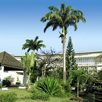 Hotel Salako