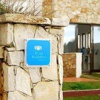 Blue Buddha Hostel