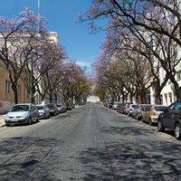 Portugal Ways Conde Barao Apartments