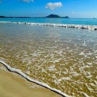 Paradise Palms B&B