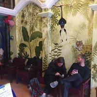Funky Jungle Hostel