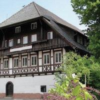 Schwarzwald Neue Linde