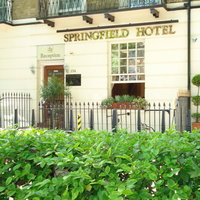 Springfield London