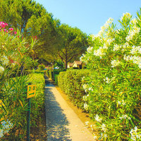 Camping Orizzonte