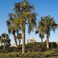 Ocean Forest Villa Resort