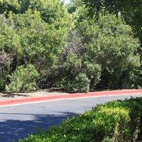 Candlewood Suites Orange County Airport Irvine West