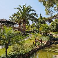 Albufeira Villa Falesia