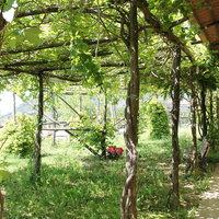 Agriturismo Piccolo Paradiso