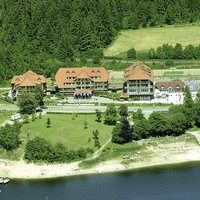 Wellness Auerhahn