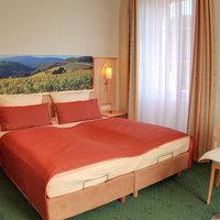 Wald Rheingau