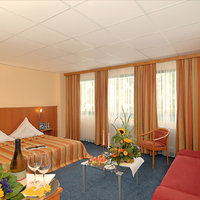 Center Hotel MainFranken