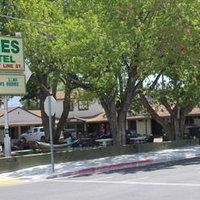 The Trees Motel