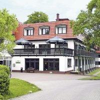 Wald Wandlitz