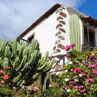 Casa El Olivar