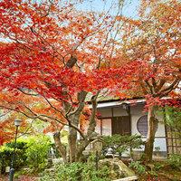 Suiran A Luxury Collection Hotel, Kyoto